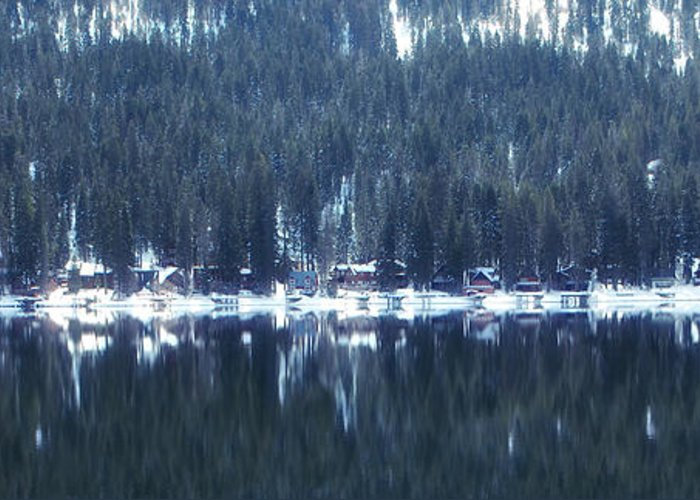 Donner Greeting Card featuring the photograph On Donner by Donna Blackhall