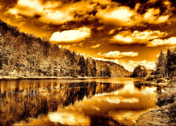 Landscapes Greeting Card featuring the photograph On Golden Pond by David Patterson