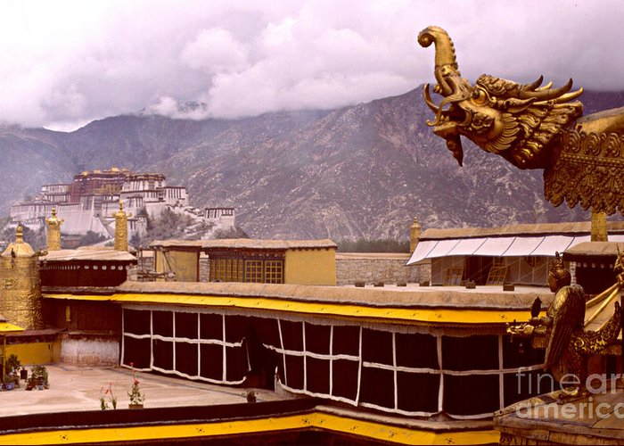 Tibet Greeting Card featuring the photograph On Jokhang Monastery Rooftop by Anna Lisa Yoder