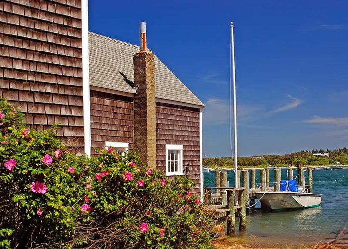 Cape Cod Greeting Card featuring the photograph On The Cape by Joann Vitali