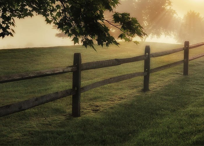 Fence Greeting Card featuring the photograph On The Fence by Bill Wakeley