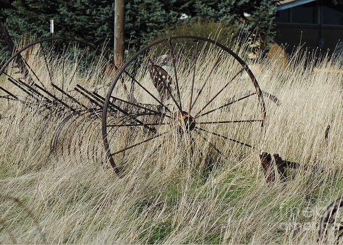 Old Farm Equipment Greeting Card featuring the photograph On The Old Farm by Rick Campbell