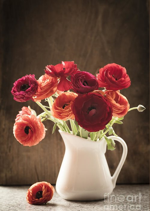 Orange Greeting Card featuring the photograph Orange And Red Ranunculus Flowers by Jan Bickerton