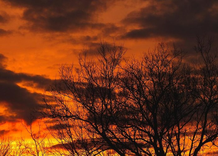 New England Greeting Card featuring the photograph Orange And Yellow Sunset by Gene Cyr
