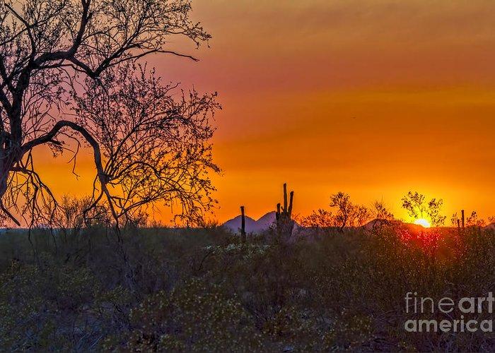 Arizona. Desert Plants Saguaro Greeting Card featuring the digital art Orange Sun Setting by Brian Lambert
