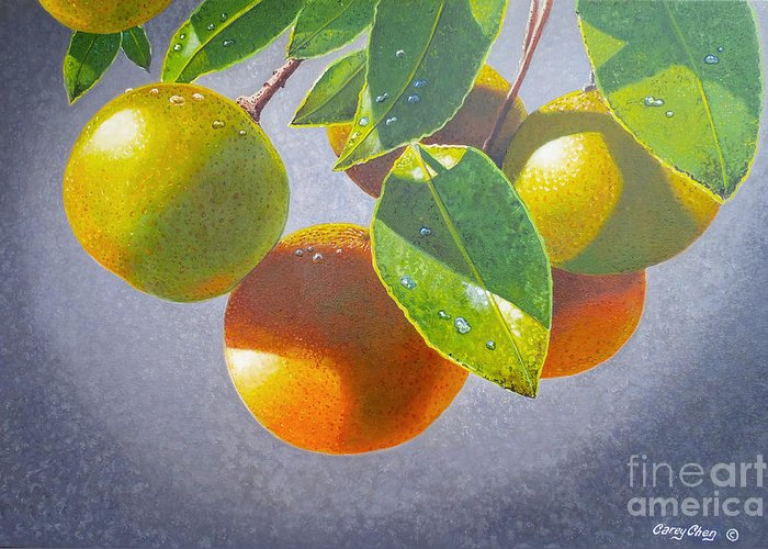 Oranges Greeting Card featuring the painting Oranges by Carey Chen