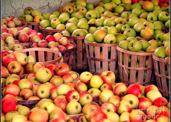 Apples Greeting Card featuring the photograph Orchard Time by Beth Ferris Sale
