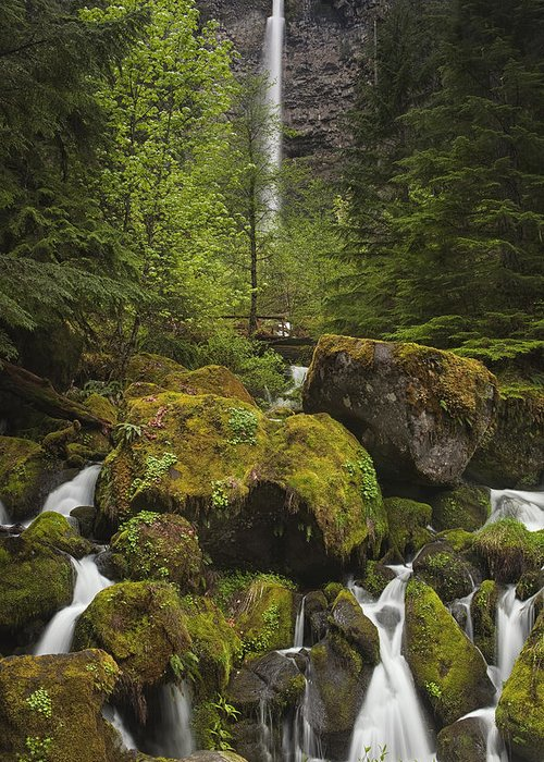Waterfall Greeting Card featuring the photograph Oregon's Watson Falls by Andrew Soundarajan