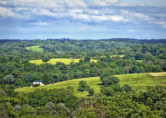 View Greeting Card featuring the photograph Osage County Lookout by Cricket Hackmann
