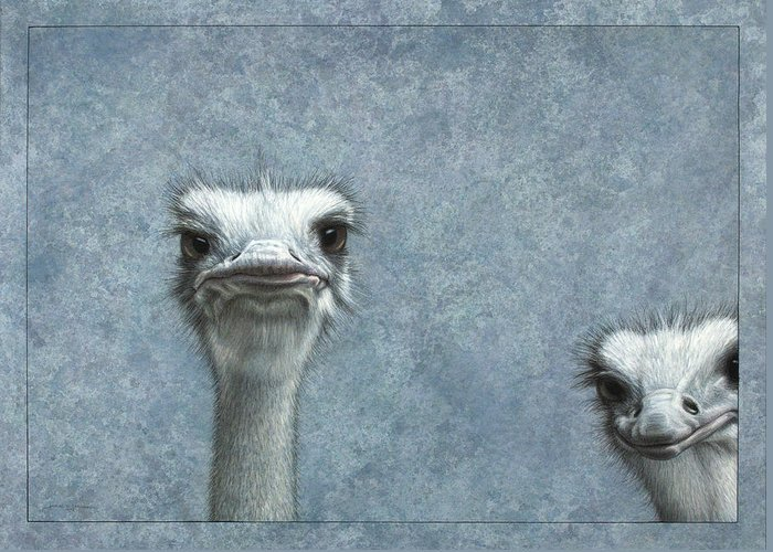 Emu Greeting Cards