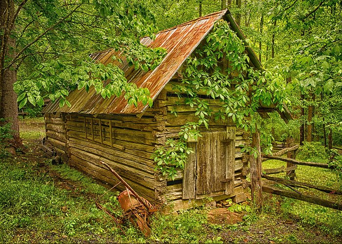 Log Building Greeting Card featuring the photograph Out Back by Priscilla Burgers