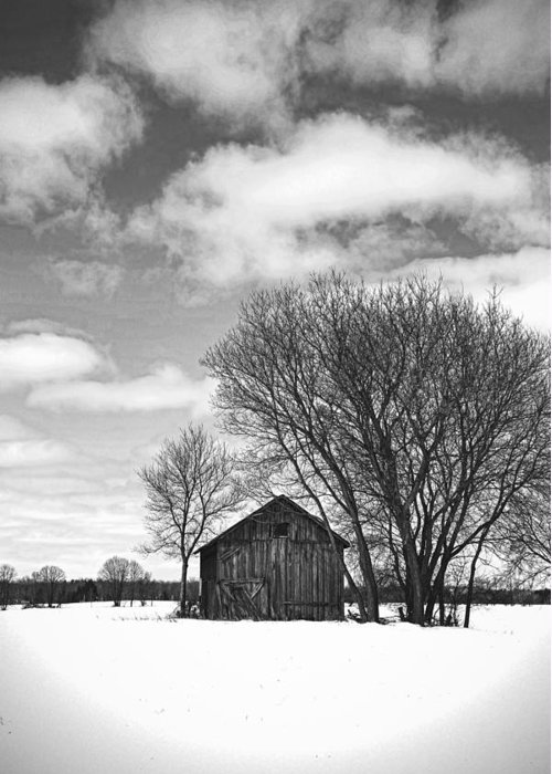 Old Farm Building Greeting Card featuring the photograph Out In The Sticks by Thomas Young