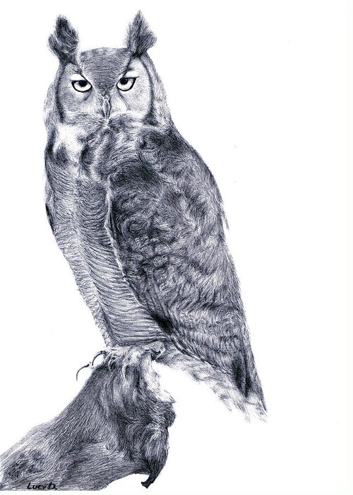 Owl Greeting Card featuring the drawing Owl by Lucy D