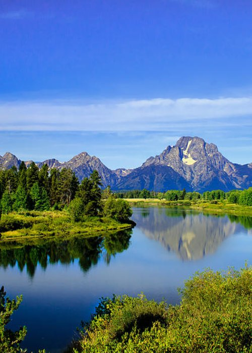 Grand Teton Greeting Card featuring the photograph Oxbow Bend by Robert Bales