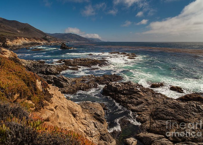 Soberanes Greeting Card featuring the photograph Pacific Coast Life by Mike Reid