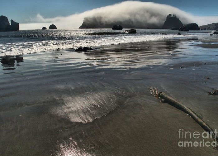 Trinidad Beach Greeting Card featuring the photograph Pacific Fog by Adam Jewell