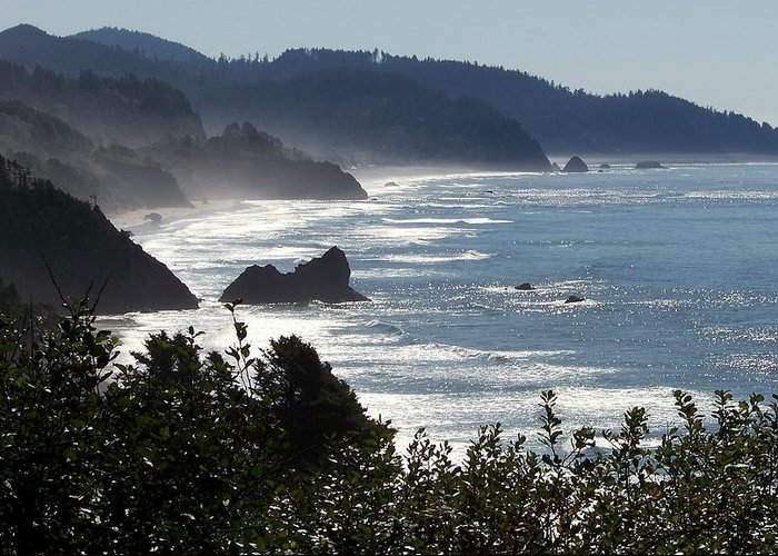 Oregon Coast Greeting Card featuring the photograph Pacific Mist by Karen Wiles