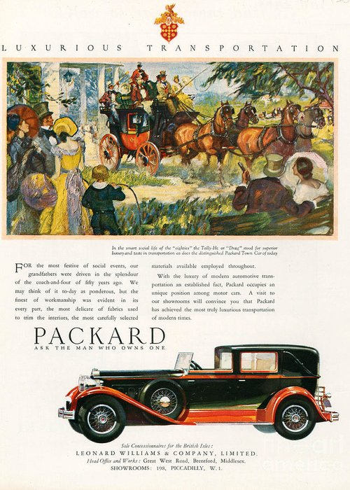 Adverts Greeting Card featuring the drawing Packard 1930 1930s Usa Cc Cars Horses by The Advertising Archives