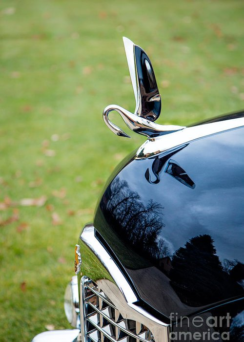 Automobiles Greeting Card featuring the photograph Packard Hood Ornament 1 by Timothy Hacker