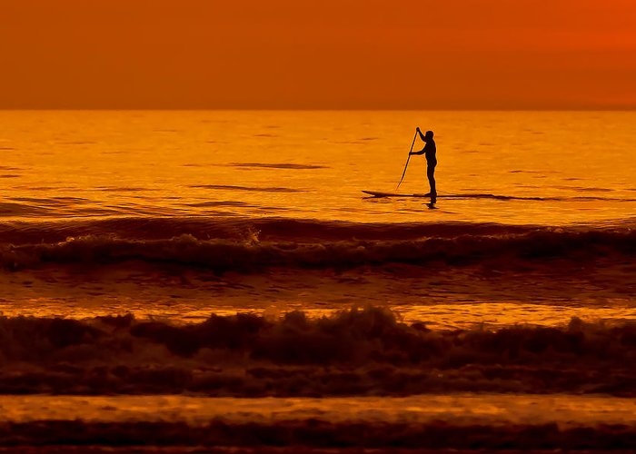 Board Greeting Card featuring the photograph Paddle Board by Jim Finch