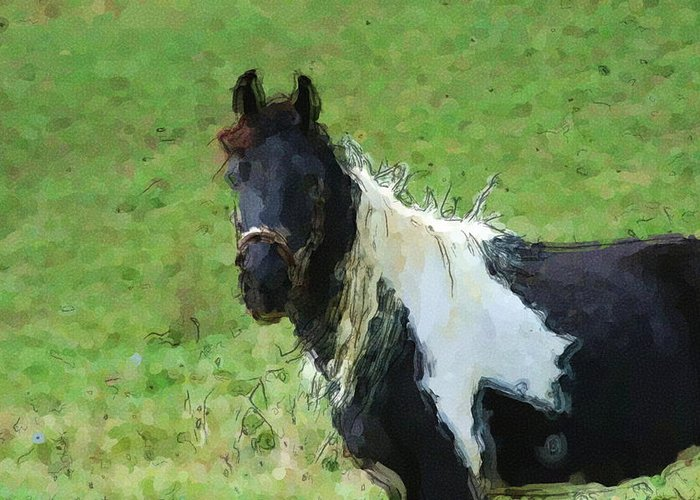 Horse Greeting Card featuring the digital art Paint Horse In Field by George Ferrell