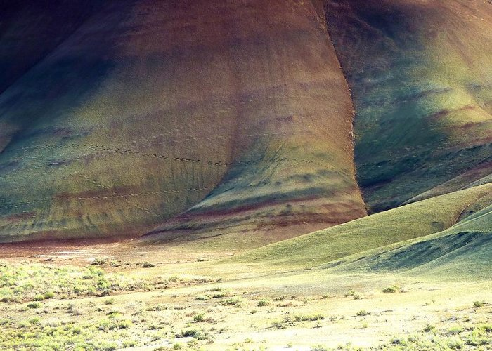 Newel Hunter Greeting Card featuring the photograph Painted Hills 11 by Newel Hunter