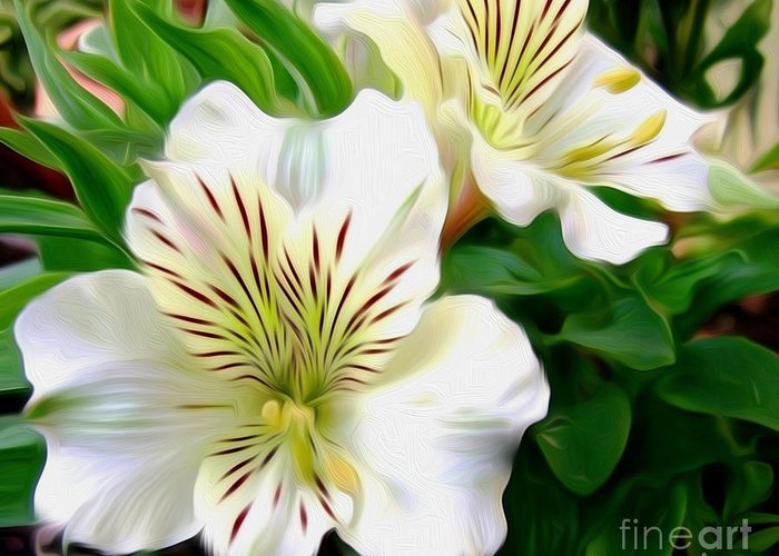 Photography Greeting Card featuring the photograph Painterly Alstroemeria by Kaye Menner
