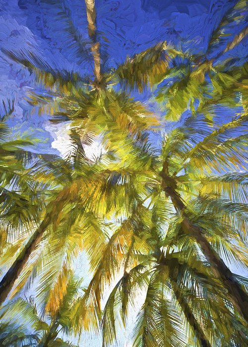 Abstract Greeting Card featuring the painting Palm Trees Of Aruba by David Letts