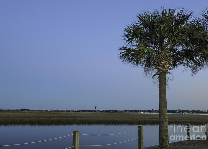 Sullivan's Island Lighthouse Greeting Card featuring the photograph Palmetto View Of Lighthouse by Dale Powell