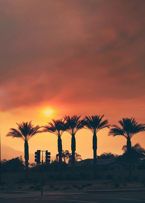 Palm Desert Greeting Card featuring the photograph Palms On Fire by Laurie Search