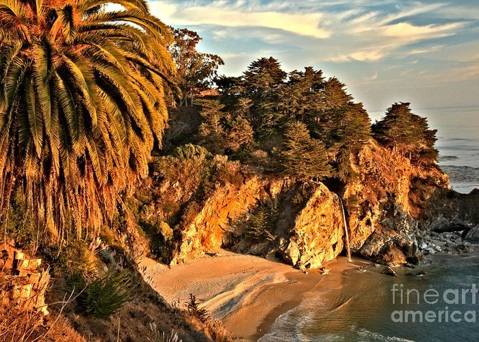 Mcway Falls Greeting Card featuring the photograph Palms Over Mcway by Adam Jewell