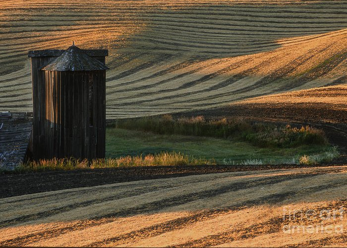 Landscape Greeting Card featuring the photograph Palouse Sunset by Sandra Bronstein