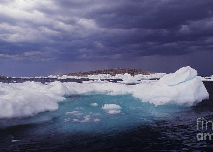 North America Greeting Card featuring the photograph Panorama Ice Floes In A Stormy Sea Wager Bay Canada by Dave Welling