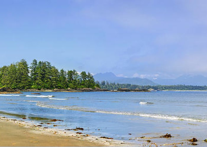Pacific Greeting Card featuring the photograph Panorama Of Pacific Coast On Vancouver Island by Elena Elisseeva