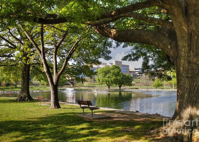 2012 Greeting Card featuring the photograph Park Bench By A Lake by Larry Braun
