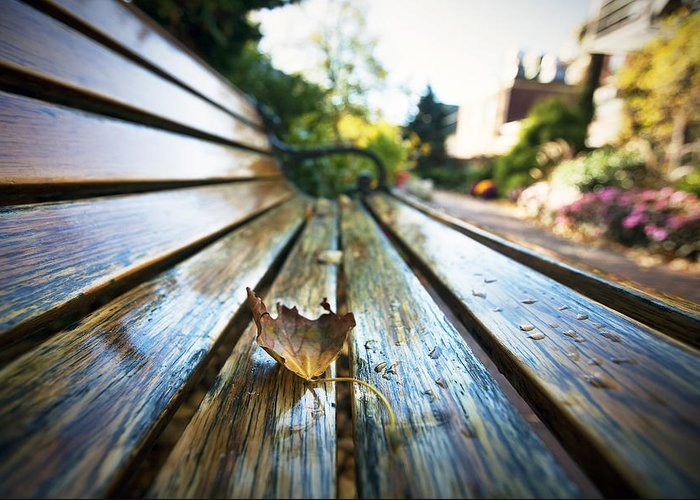Park Bench Greeting Card featuring the photograph Park Bench by Eric Gendron