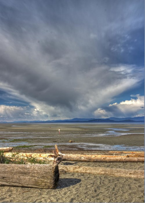 Sand Greeting Card featuring the photograph Parksville Beach - Low Tide by Randy Hall