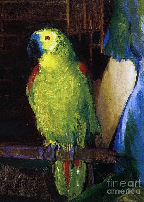 Bird; Pet; Green; Colourful; Tropical; Exotic; Interior; Domestic; Parrot; Birds; Parrots; Colorful; Animal; Oil Paint; Oil Painting; George; Wesley; George Wesley; Bellows; George Wesley Bellows; Animal; Animals; Animal Life; Pets; Pet Bird; Green; Red; Blue; Feather; Feather; Talon; Talons; Atop; Perch; Perched; Beak; Black Beak; Domesticated; Nature; Natural; Wildlife; Owner; Pet Owner; Woman; Arm; Blue Dress; Dress; Pet Owners; Indoor; Indoors; Creature; Living Thing; Alive; Wing; Wings Greeting Card featuring the painting Parrot by George Wesley Bellows