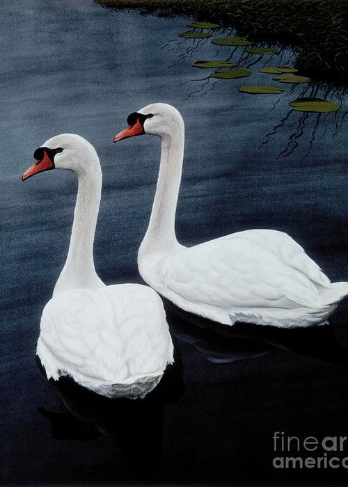 Swans Greeting Card featuring the painting Partners by Michael Swanson