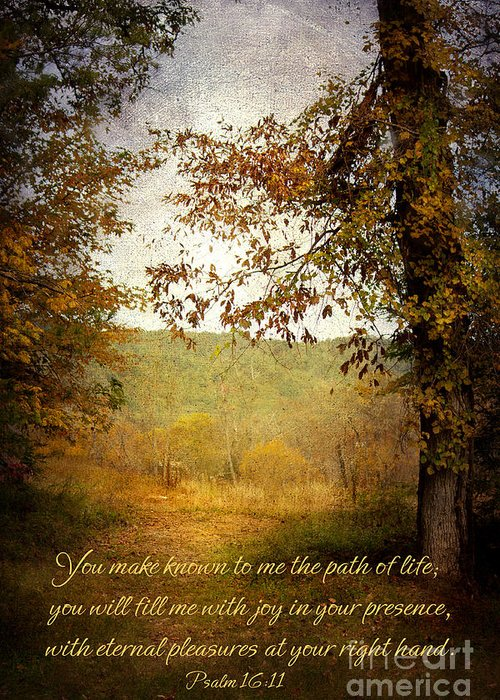 Scripture Greeting Card featuring the photograph Path Of Life by Lena Auxier