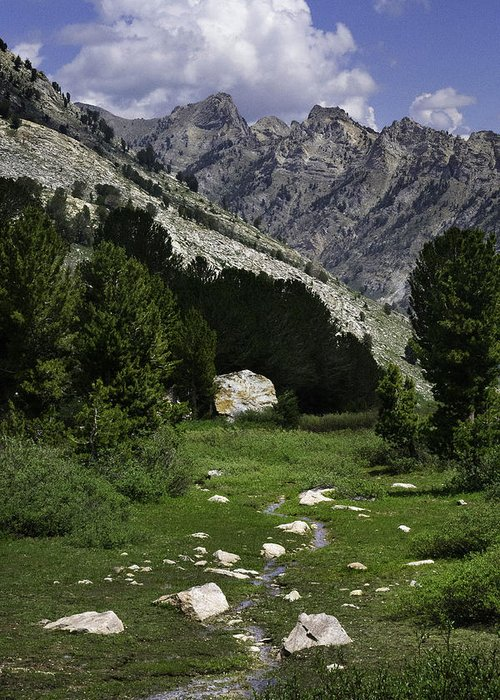 Ruby Mountains Greeting Card featuring the photograph Path Of Life Ruby Mountains Stock Trail by Karen W Meyer