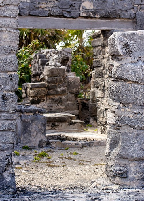 Access Greeting Card featuring the photograph Path Through Mayan Ruins by Jannis Werner