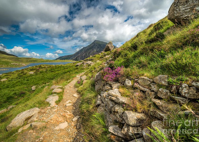 Hdr Greeting Card featuring the photograph Path To Lake Idwal by Adrian Evans