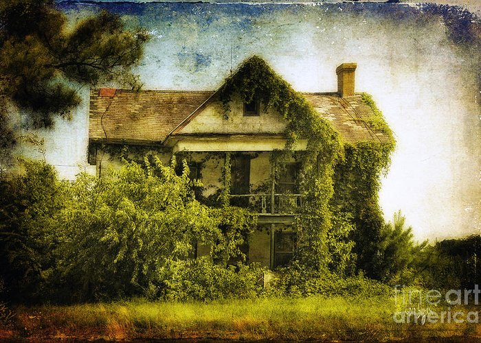 House Greeting Card featuring the photograph Patiently Waiting by Lois Bryan