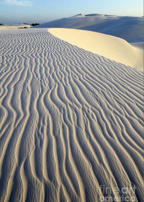 Sand Greeting Card featuring the photograph Patterns In The Sand Brazil by Bob Christopher