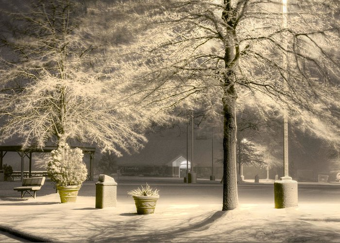 Blizzard Greeting Card featuring the photograph Peaceful Blizzard by JC Findley