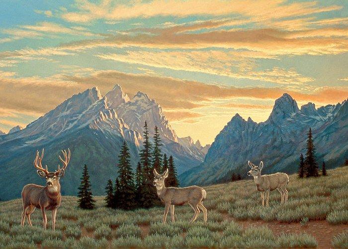 Mule Deer Greeting Cards
