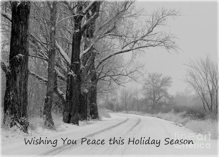 Winter Greeting Card featuring the photograph Peaceful Holiday Card by Carol Groenen
