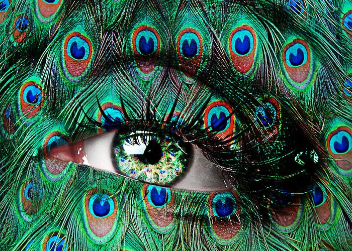 Peacock Greeting Card featuring the photograph Peacock by Yosi Cupano
