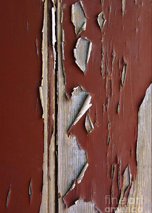 Abstract Greeting Card featuring the photograph Peeling Paint by Carlos Caetano